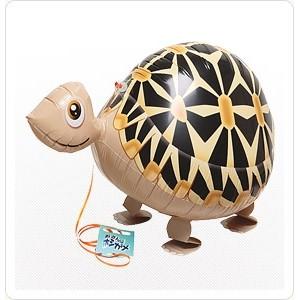 SAG Walking Balloon - Tortoise 星點班紋龜 (non-pkgd.), SAG-W8814