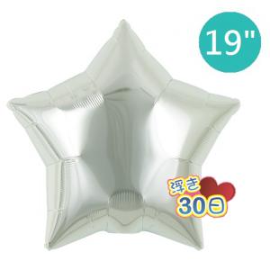 """Ibrex Star 19"""" 星形 Metallic Silver (Non-Pkgd.), TKF19SP311202"""