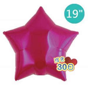 "Ibrex Star 19"" 星形 Metallic Magenta (Non-Pkgd.), TKF19SP311210"
